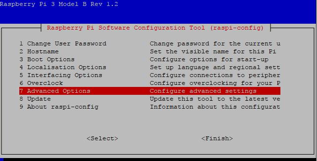 raspi-config Advanced Options